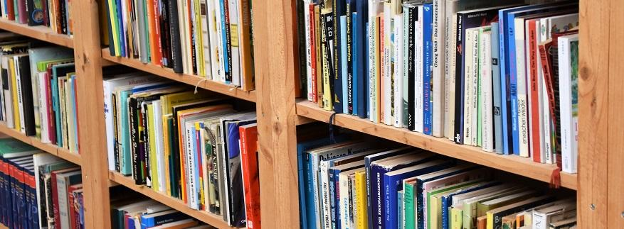 Photo of new books on a shelf